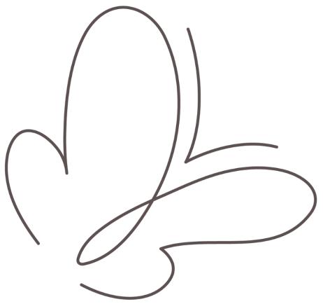 illustration papillon